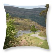 Llyn Gerionedd Lake Throw Pillow
