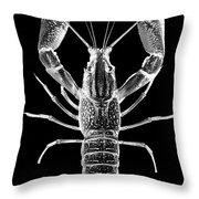 Crawfish In The Dark - Xray Throw Pillow
