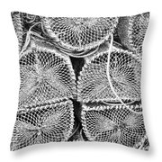 Lobster Creels Throw Pillow