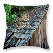 Local Attraction Throw Pillow