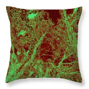 Locals 67 Throw Pillow