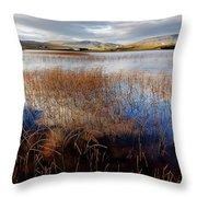 Loch Mealt Throw Pillow