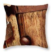 Locked Barn Throw Pillow