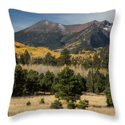 Lockett Meadow Autumn Throw Pillow