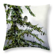 Lofty Perch Throw Pillow