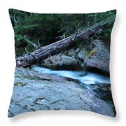 Log Over Deep Creek Throw Pillow