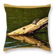 Log Turtle L 3584 Throw Pillow