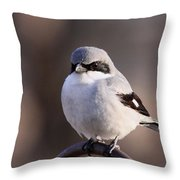 Loggerhead Shrike - Smokey Throw Pillow