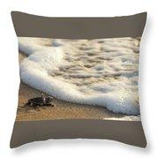 Loggerhead Turtle Hatchling 4 Delray Beach Florida Throw Pillow