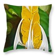 Lollipop Flower In Bourbon Resort Gardens Near Iguazu Falls National Park-brazil  Throw Pillow