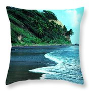 Londonderry Bay Throw Pillow by Thomas R Fletcher