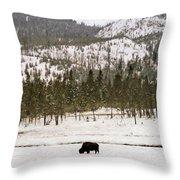 Lone Buffalo Throw Pillow