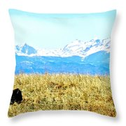 Lone Buffalo Watching The Rocky Mountains Throw Pillow