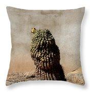 Lone Cactus In Sepia Tone Throw Pillow