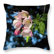 Lone Cherry Blossoms Throw Pillow