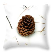 Lone Cone Throw Pillow