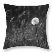 Lone Dandelion Black And White Throw Pillow