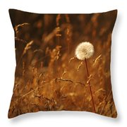 Lone Dandelion Throw Pillow