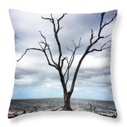 Lone Dead Tree Throw Pillow