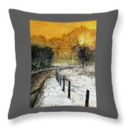 Lone Deer At Sunset Throw Pillow
