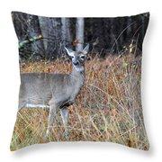 Lone Doe Throw Pillow