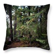 Lone Dogwood Throw Pillow