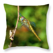 Lone Dragonfly Throw Pillow