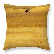 Lone Elk In Field Throw Pillow