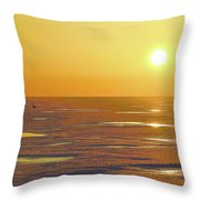 Lone Goose At Sunrise Throw Pillow