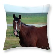 Lone Horse Throw Pillow