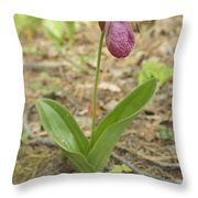 Lone Lady Slipper Throw Pillow