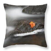 Lone Leaf Throw Pillow