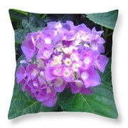 Lone Lilac Throw Pillow