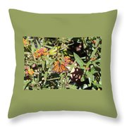 Lone Momarch Throw Pillow