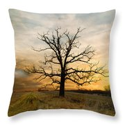 Lone Oak On The Marsh Throw Pillow