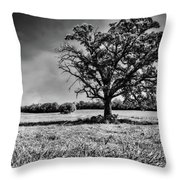 Lone Oak Tree In Black And White Throw Pillow