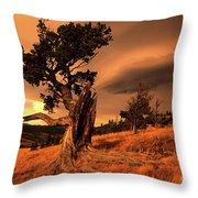Lone Pine Whaleback Ridge Throw Pillow