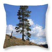 Lone Pine, Yellowstone Throw Pillow