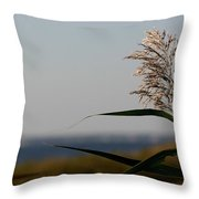 Lone Seagrass Throw Pillow