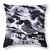 Lone Seagull Throw Pillow
