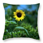 Lone Sunflower  Throw Pillow