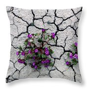 Lone Survivors Throw Pillow