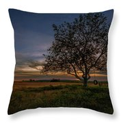 Lone Sycamore Throw Pillow