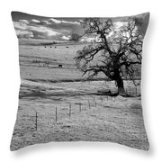Lone Tree And Cows 2 Throw Pillow