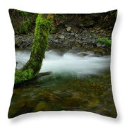 Lone Tree And Running Water Throw Pillow