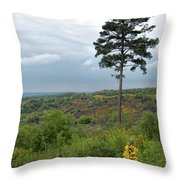 Lone Tree At Devils Punch Bowl Throw Pillow