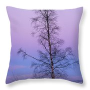 Lone Tree At Winter Sunset Throw Pillow