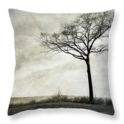 Lone Tree By The Lake Throw Pillow by Mary Lee Dereske