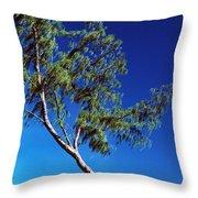 Lone Tree Hawaii Throw Pillow