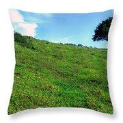 Lone Tree Hill  Throw Pillow